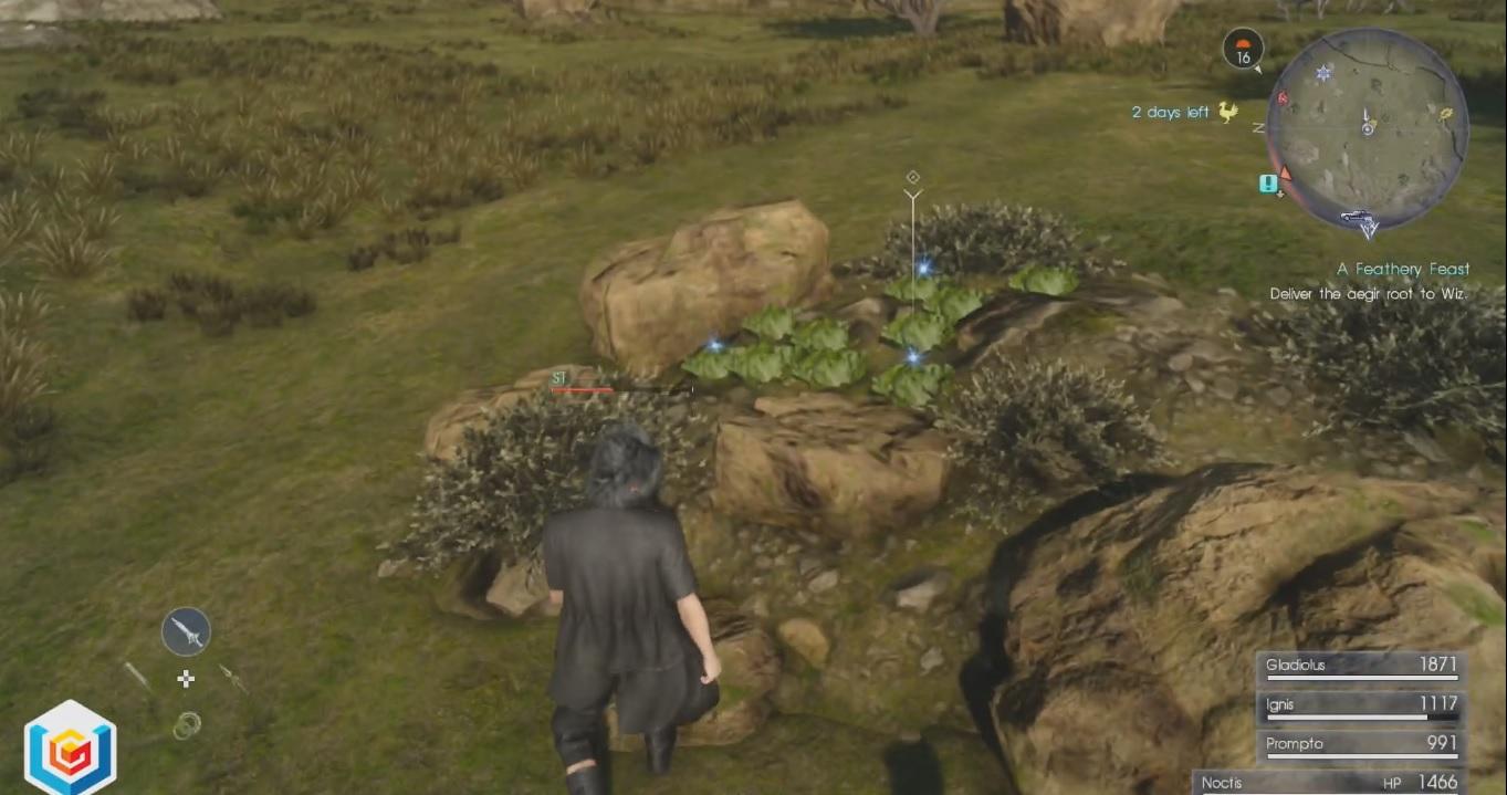 Final Fantasy XV A Feathery Feast Side Quest Walkthrough